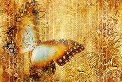 - Altın Zeminde Kelebek Kanvas Tablo