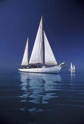- Beyaz Tekneler Kanvas Tablo