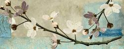 - Dalda Çiçekler Kanvas Tablo