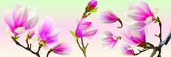 - Dalda pembe Çiçekler Kanvas Tablo