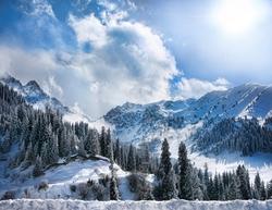 - Karlı Ağaçlı Dağlar Kanvas Tablo