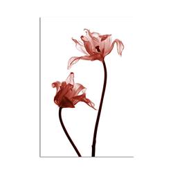 - Kırmızı Çiçekler Kanvas Tablo