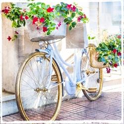 - Kırmızı Çiçekli Bisiklet Kanvas Tablo
