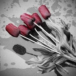 - Kırmızı Güller Kanvas Tablo