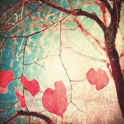 - Kırmızı Yaprak Kanvas Tablo