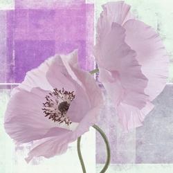 - Lila Çiçekler Kanvas Tablo