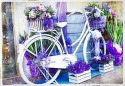 - Mor Beyaz Bisiklet Kanvas Tablo