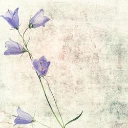 - Mor Çiçek Kanvas Tablo