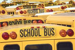 - School Bus Kanvas Tablo
