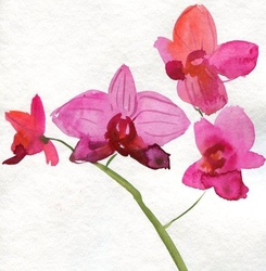 - Suluboya Çiçekler Kanvas Tablo