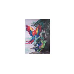 - Renkli Papağan Yağlıboya Tablo