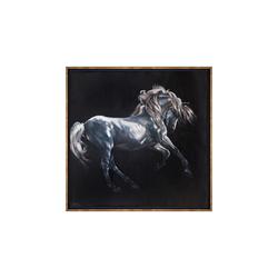 - Beyaz At Yağlıboya Tablo