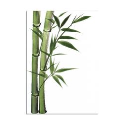- Yeşil Bambu Kanvas Tablo