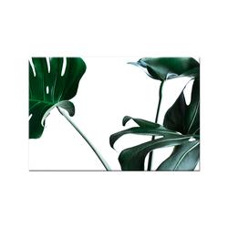 - Yeşil Yaprak Kanvas Tablo