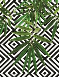 - Yeşil Yapraklar Kanvas Tablo